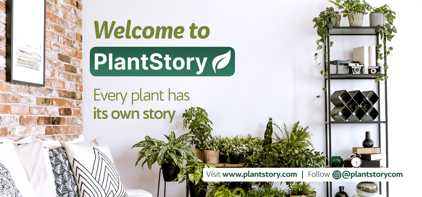 Welcome to PlantStory