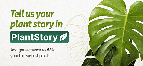 Tell us your plant story