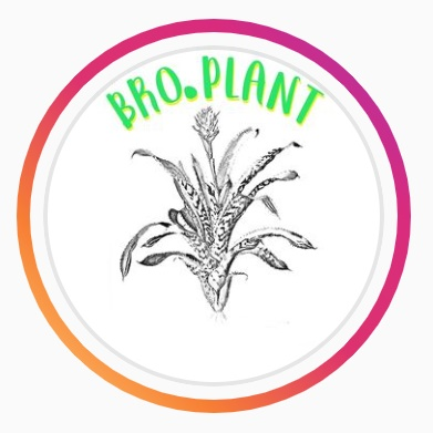 bro.plant