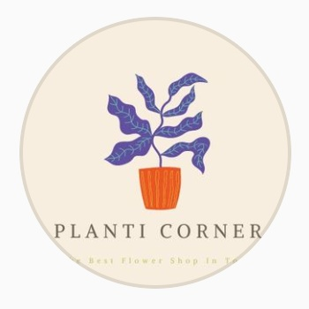 Planti Corner