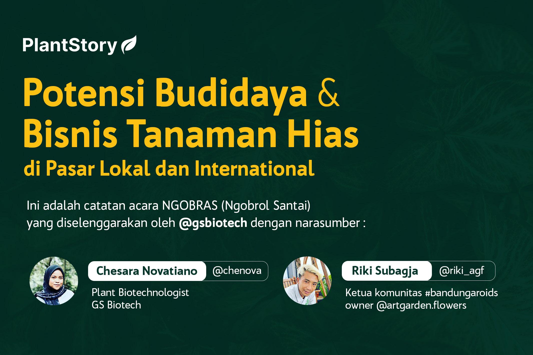 Potensi Budidaya dan Bisnis Tanaman Hias di Pasar Lokal dan International