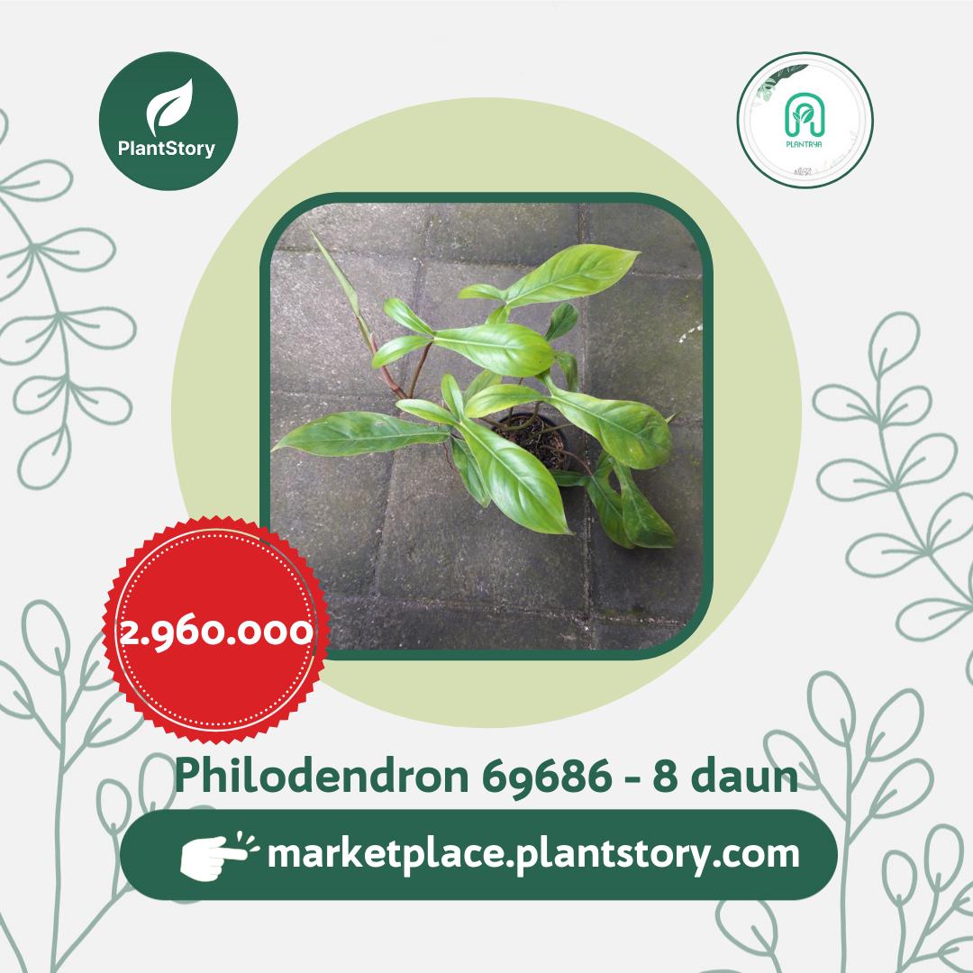 Plantrya