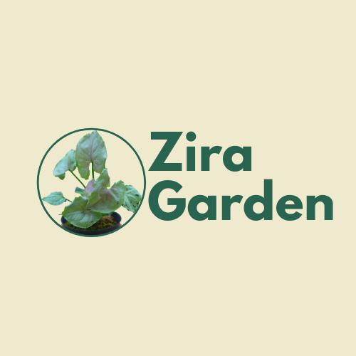 Zira Garden