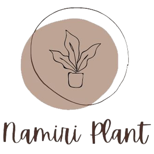 Namiri Plant